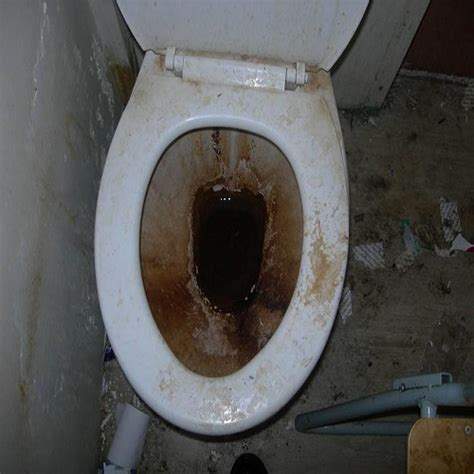 real toilets prison uk an insider s view our prisons