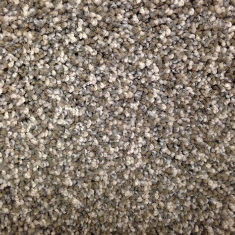 Make Textured Paint - shop stainmaster petprotect georgetown north ridgeline carpet sample at lowes com