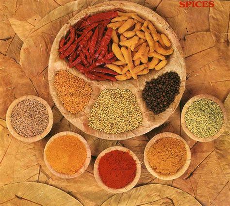 alimentazione indiana cucina indiana ricette e piatti tipici molto speziati