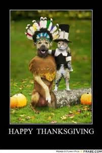 thanksgiving cat meme gallery for gt happy thanksgiving meme