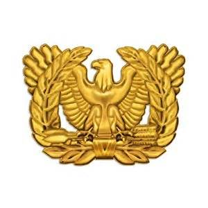 gallery gt warrant officer eagle clipart