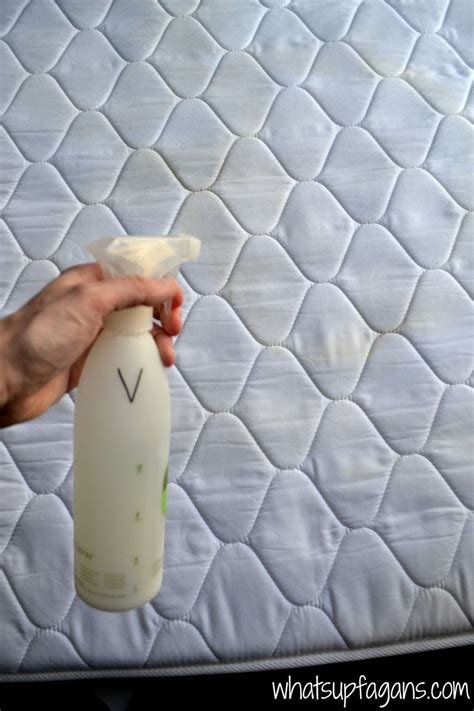 Cleaning Urine Out Of Mattress by Hometalk How To Remove Stains And Smell From A
