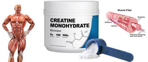 supplement information creatine supplement information 101 hayward s total