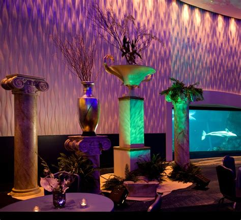 aquarium design atlanta 89 best images about under the sea on pinterest sea