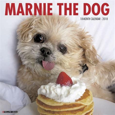 marnie the marnie the wall calendar 9781682347386 calendars
