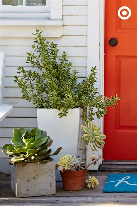 Front Door Potted Plants 17 Best Ideas About Front Door Plants On Front Door Landscaping Front Door Planters