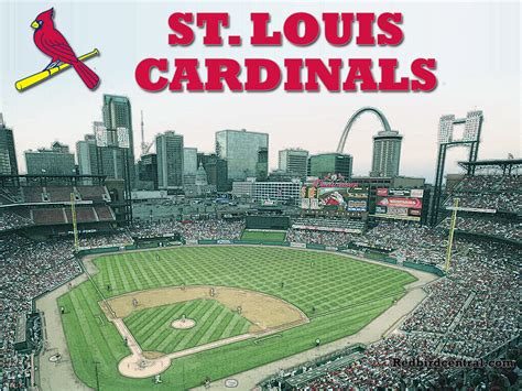 Office Team St Louis by Cardinals Logo Page 7