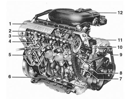 marvelous m43 e36 bmw engine diagram contemporary best