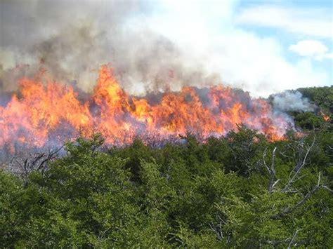 imagenes de riesgos naturales geologicos los incendios forestales cuidemos el planeta tierra