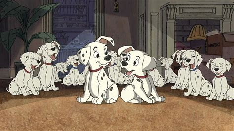 101 dalmatians puppies 101 dalmatians comedy adventure family puppy 100 dalmatians disney hd wallpaper