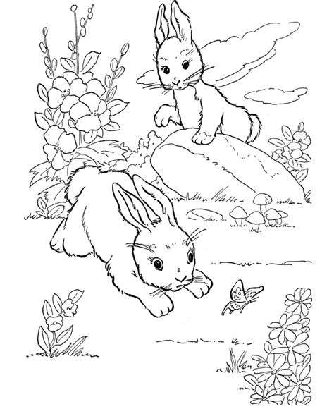 winter rabbit coloring page winter animals coloring pages coloring home