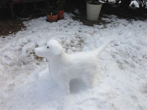 how to a dogs how to make a snow sculpture