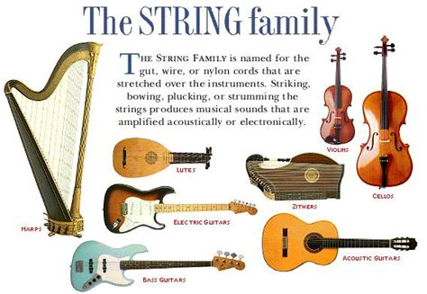 What Is String - instruments of the orchestra llerenamusica