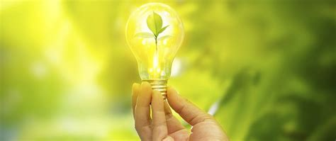 4 Must Know Faqs Sustainability Consulting In Tech