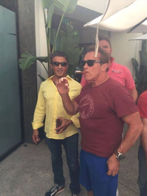 arnold schwarzenegger consoles fan sylvester stallone and fan get photobombed by arnold