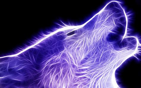 wallpaper cool wolf wolf wallpapers best wallpapers