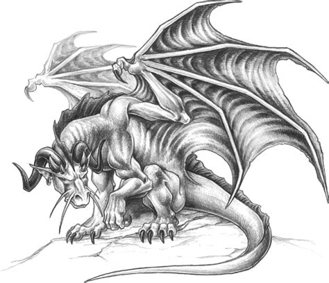 Side Artist Agreement Template types of dragons drawing made easy dragons amp fantasy