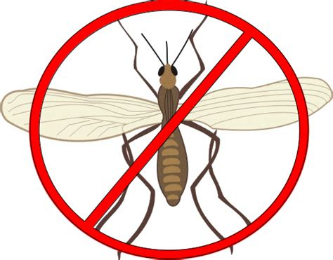 how to get rid of gnats in kitchen and bathroom 30 ways to get rid of gnats inside and outside the house