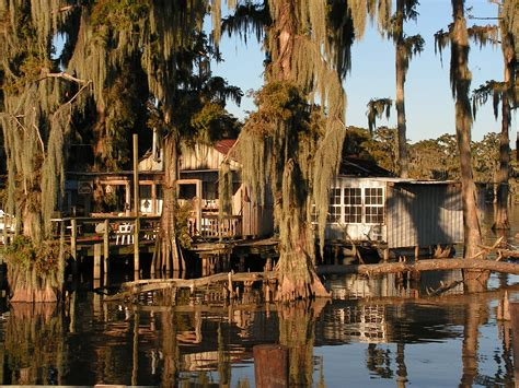 sw and bayou boat tour louisiana bayou photography www pixshark images