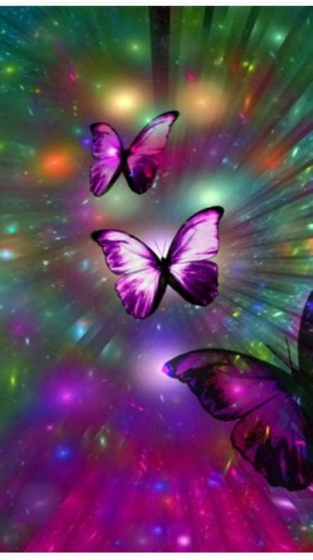 butterfly wallpapers   zedge