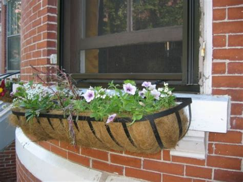 Flower Pots On Window Sills Flower Boxes On The Windowsill Outside Safe And