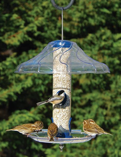 how to make a rain guard for bird feeder aspects fancy swirl dome 383 bird feeder accessories bird feeders buy bird feeders