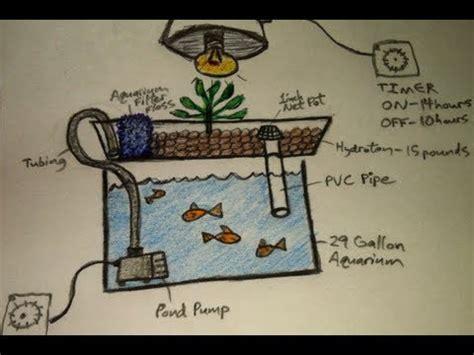 aquaponics  dummies  easiest diy indoor aquaponic