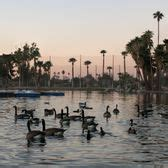phoenix paddle boats encanto park 184 photos 50 reviews parks 2605 n