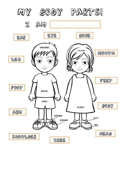 body coloring pages for toddlers body parts linking activity