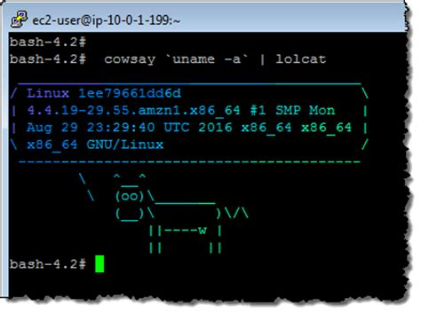 amazon linux new amazon linux container image for cloud and on premises