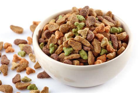 alimenti gatti cibo per gatti fatto in casa non sprecare