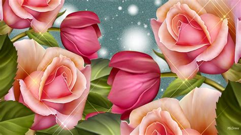 themes rose flower latest desktop background theme pictures and images download