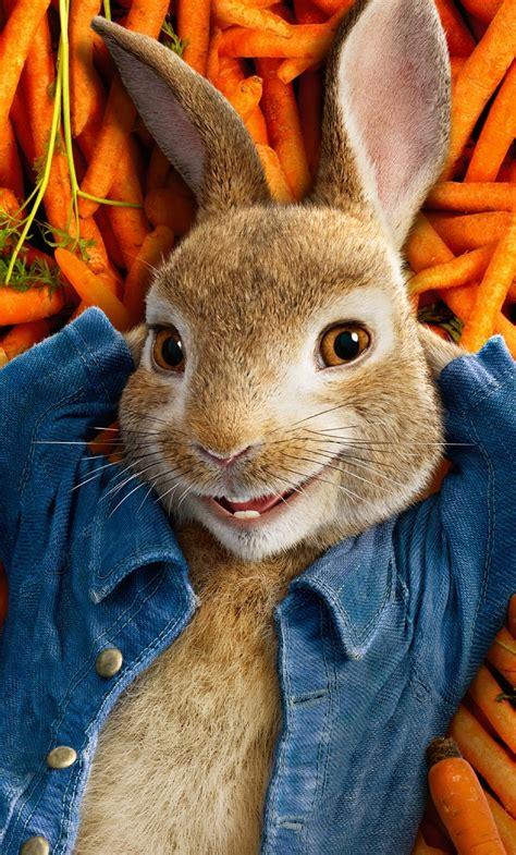 peter rabbit   poster full hd  wallpaper