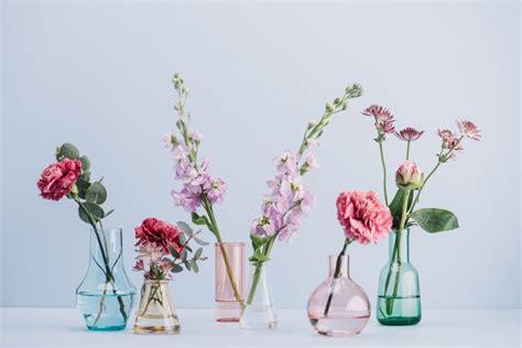 fiori recisi fiori recisi come mantenerli sempre freschi www stile it