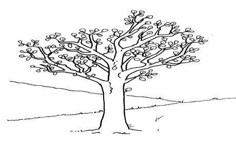 İlkbahar ağacı boyama