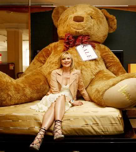 teddy for sale teddy for sale quotes