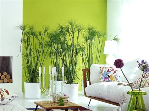 Green Decorating Idea by C 243 Mo Decorar La Sala Con Paredes Verdes Decorar Y M 225 S