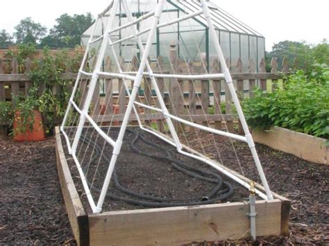 build a garden trellis how to build a pvc trellis how tos diy