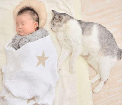 nove mesi neonato alimentazione l anziana gatta si occupa neonato come se fosse il