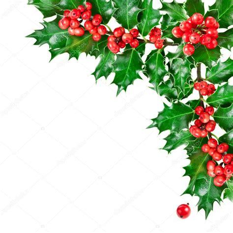 christmas mistletoe decoration stock photo 169 madllen