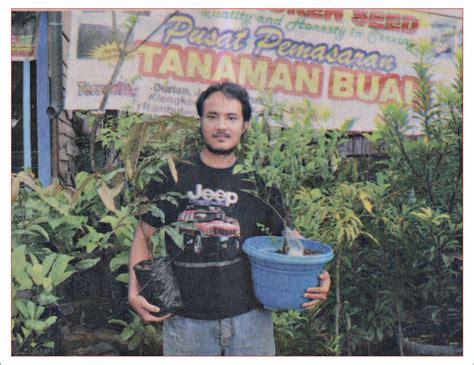 Cari Bibit Srikaya Jumbo cari benih durian unggul berkualitas m seed spesial