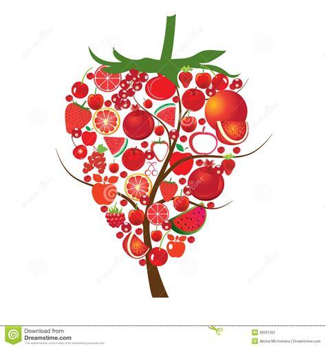 imagenes vectorizadas libres frutas rojas imagen de archivo imagen 36567201