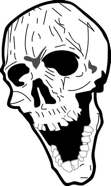 imagenes de calaveras riendo sch 228 del b 246 se lachen 183 kostenlose vektorgrafik auf pixabay