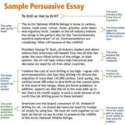 Argumentative Essay Introduction Exles by Persuasive Essay Introduction Example Related