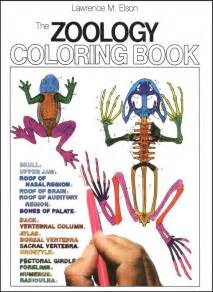 Zoology colouring pages