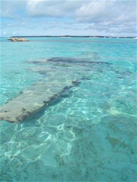 boat crash exuma sunken drug plane picture of exuma water tours great