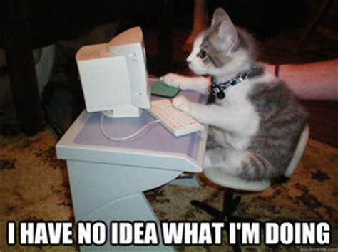 Cat Laptop Meme - cat computer memes quickmeme