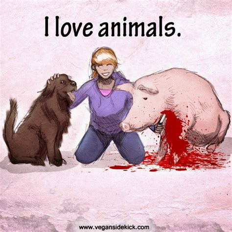 Dog Lover Meme - vegan memes i love animals