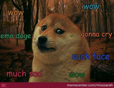 Make Doge Meme - sad doge is sad by misssarah meme center