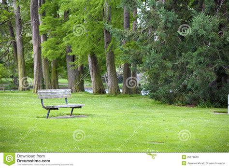 green park bench green park with a bench stock photos image 25678613